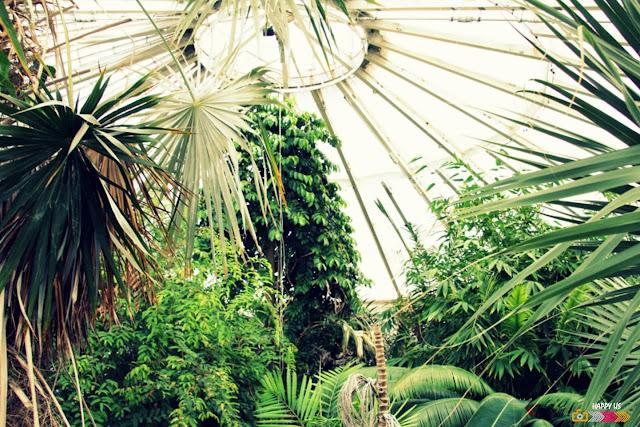 Copenhague - Jardin botanique