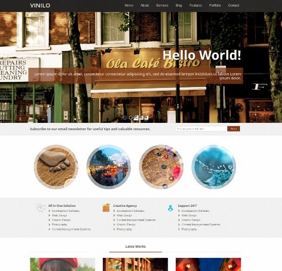 Vinilo Responsive WordPress Theme