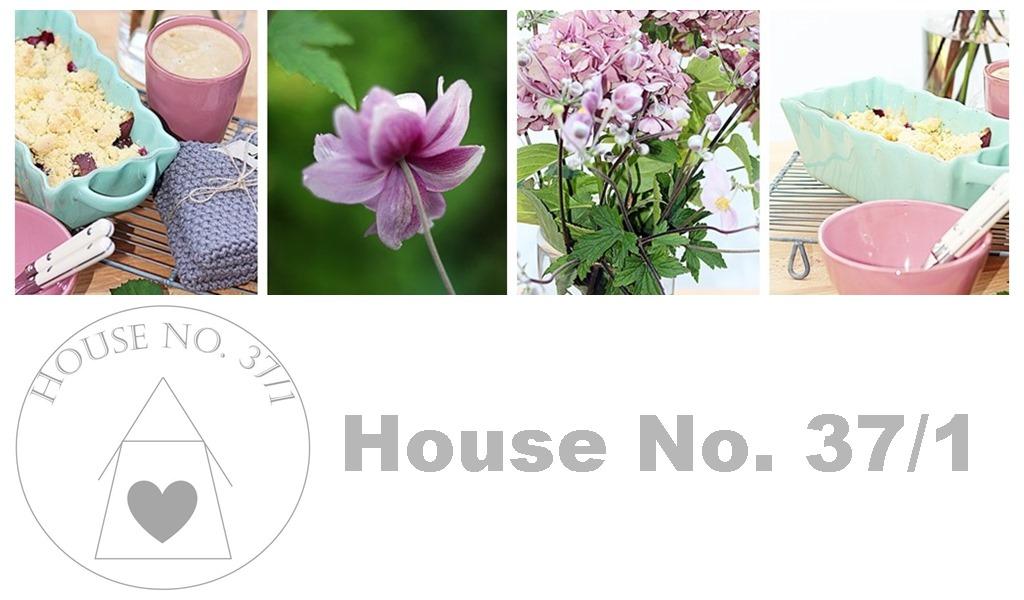 House No. 37/1