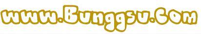 www.bunggsu.com