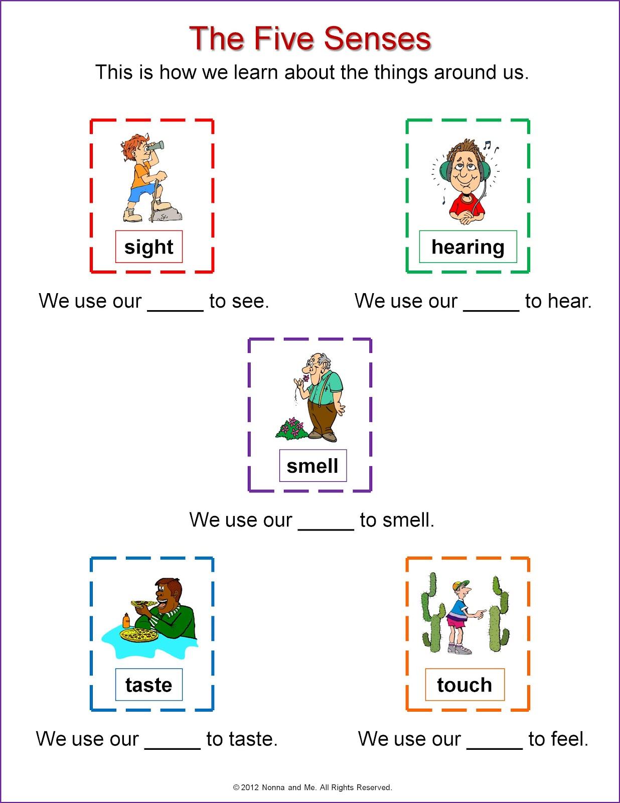 The Five Senses - Lessons - Tes Teach