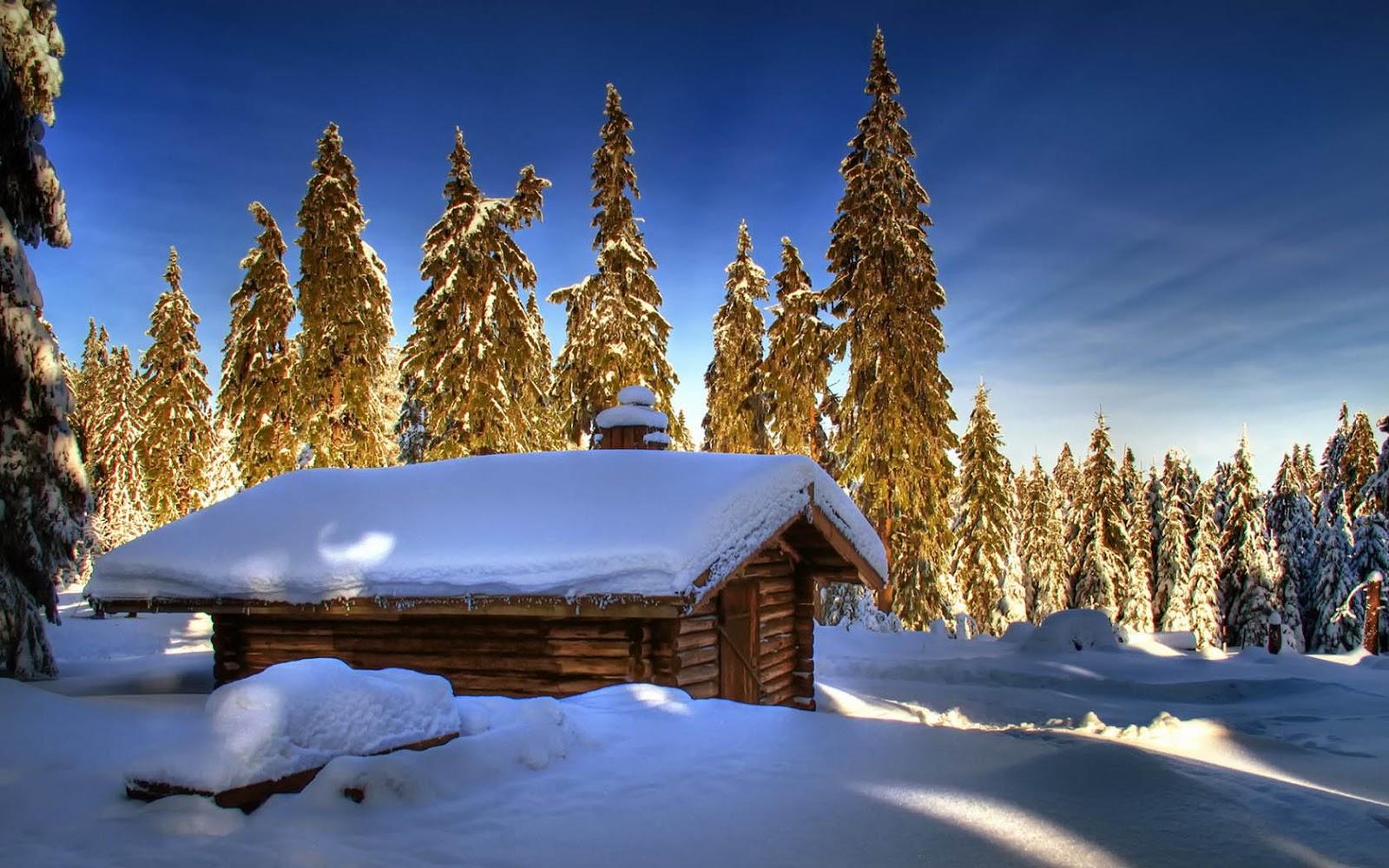 http://2.bp.blogspot.com/-xzN48pSGmGQ/UOgYahttW0I/AAAAAAAAKzs/C7GnMWcjamI/s1600/winter-wallpaper-met-een-houten-hut-in-de-sneeuw-met-bomen-op-de-achtergrond.jpg