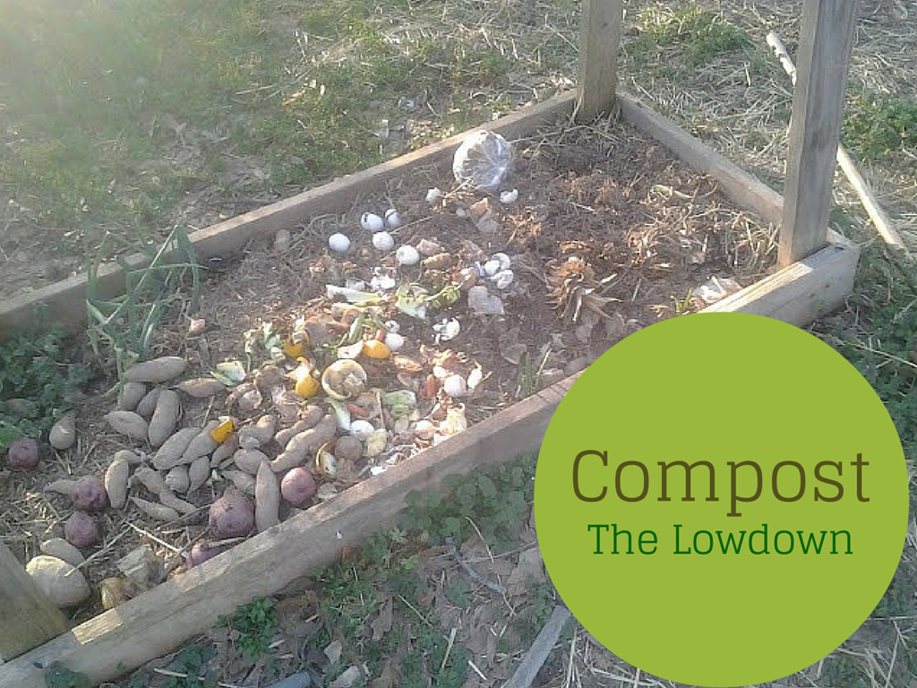 ways of composting on the small homestead