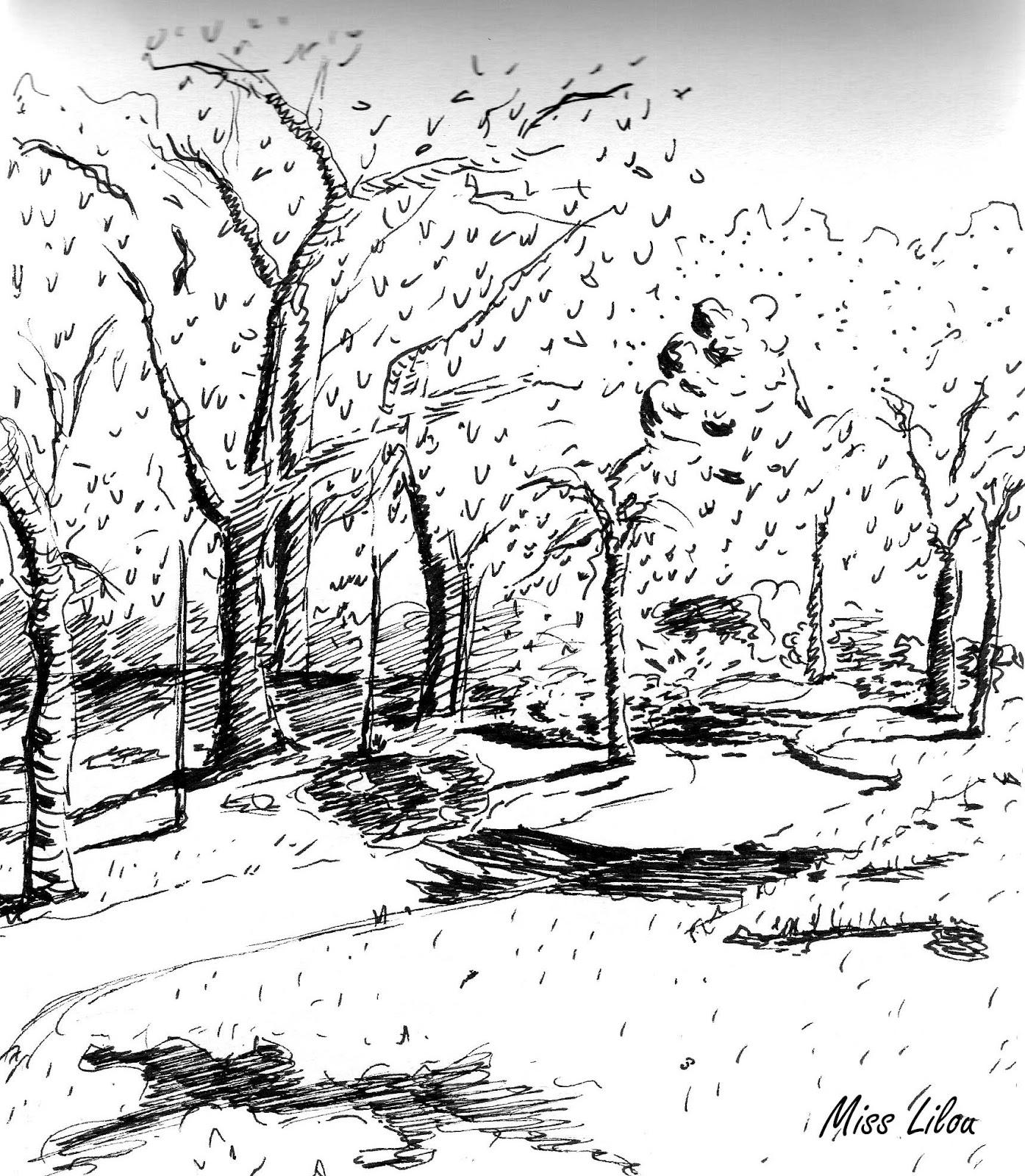 Visite dessin e avec rapha l larre au jardin japonais for Jardin japonais dessin