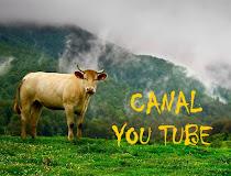 La Cueva Boreal en YOU TUBE (pincha en la imagen y descubre los videos)