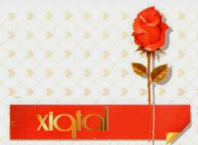 XiQtal