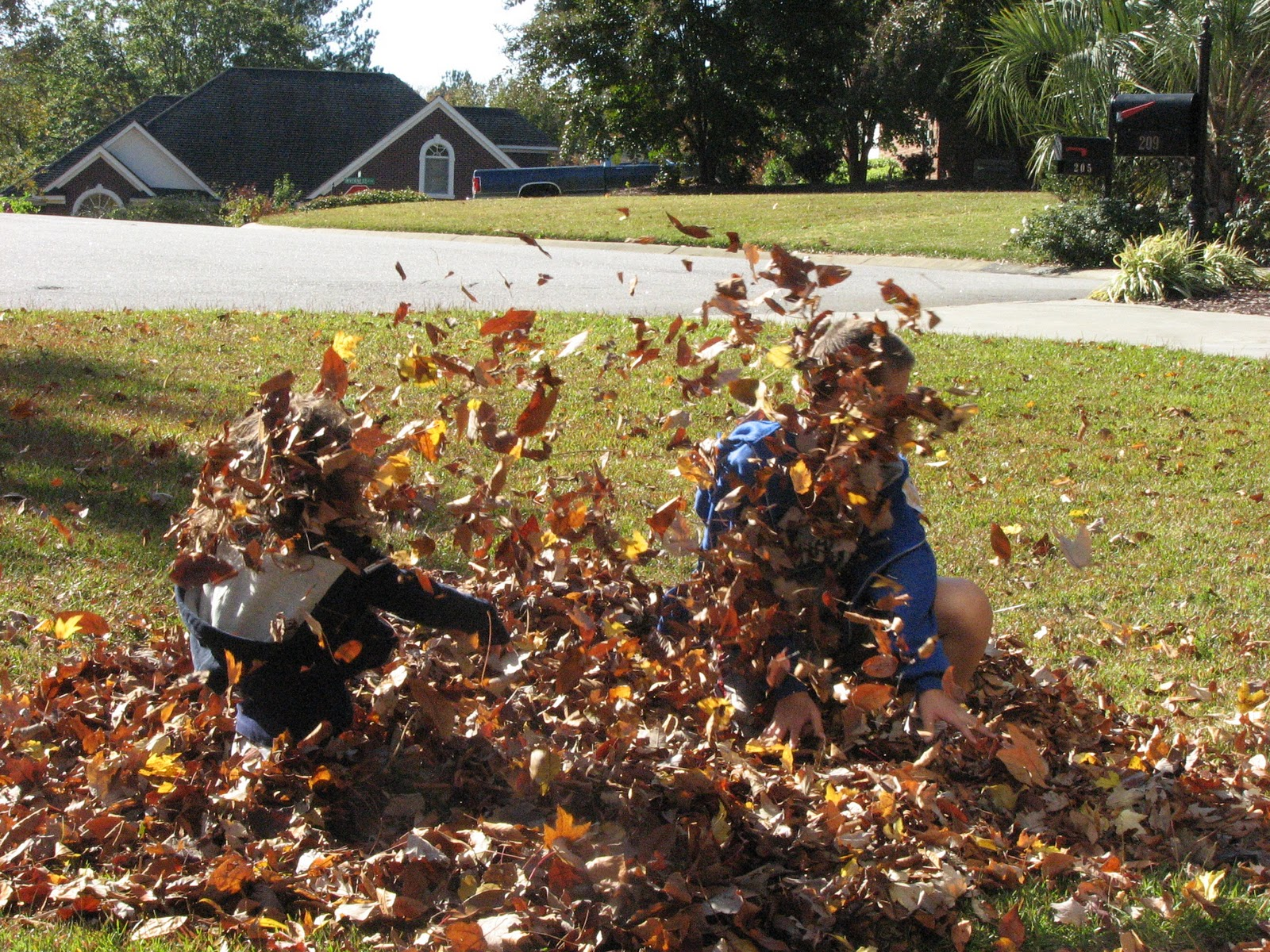 The Crafty Quilter S Closet Leaf Pile