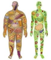 Νέα δεδομένα στη σχέση διατροφής και καρκίνου