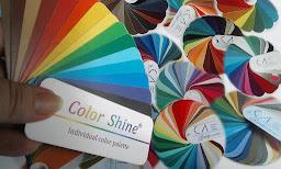 """Заказать индивидуальную палитру """"Color Shine"""" по координатам BFAS"""