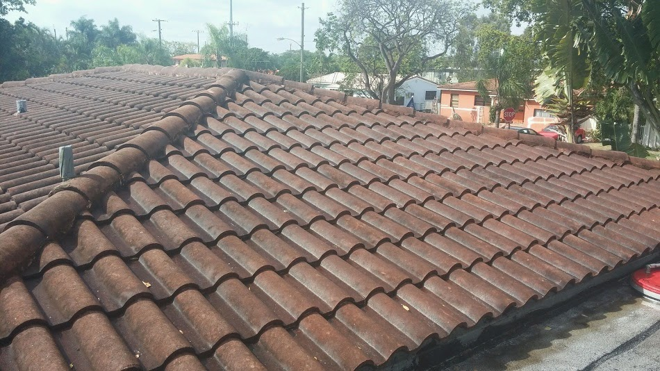 Roof Cleaning and Painting in Miami Springs, Fl