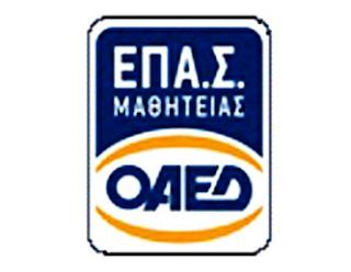 Καστοριά: Οι ειδικότητες που θα λειτουργήσουν στις σχολές μαθητείας του ΟΑΕΔ