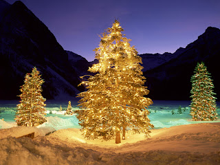صور جديدة لشجرة الكريسماس 2013