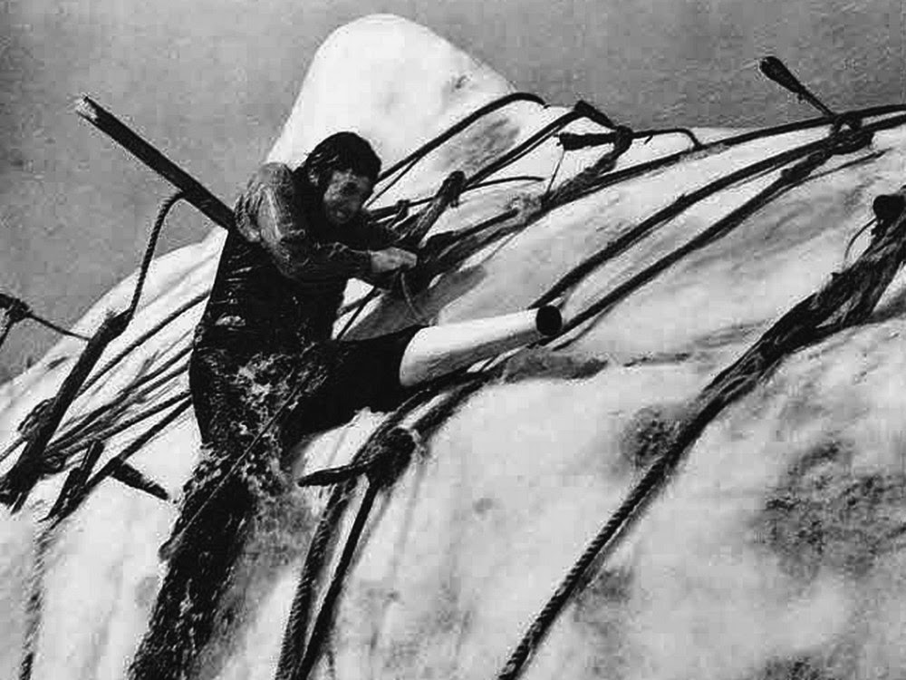 life and death in herman melvilles moby dick You might find it ironic that you're currently watching a video about herman melville when, at his death herman melville: moby-dick summary herman melville.