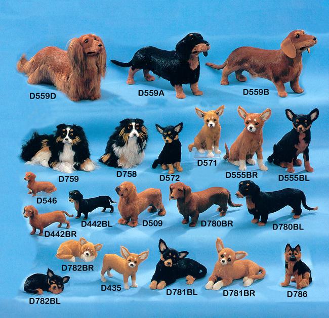 Dog Breeds Under 20 Pounds - Dog Breeds