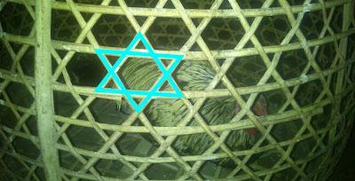 http://cirebon-cyber4rt.blogspot.com/2012/08/kandang-ayam-mempunyai-simbol-zionis.html
