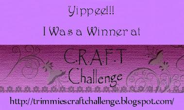 Winnaar challenge 186