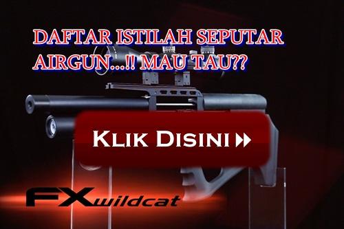Istilah airsoft gun