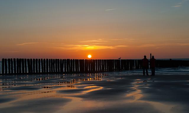 Zwarte Polder Holland, Sonnenuntergang