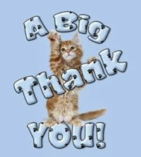 A big thank you - Photo  comment, image