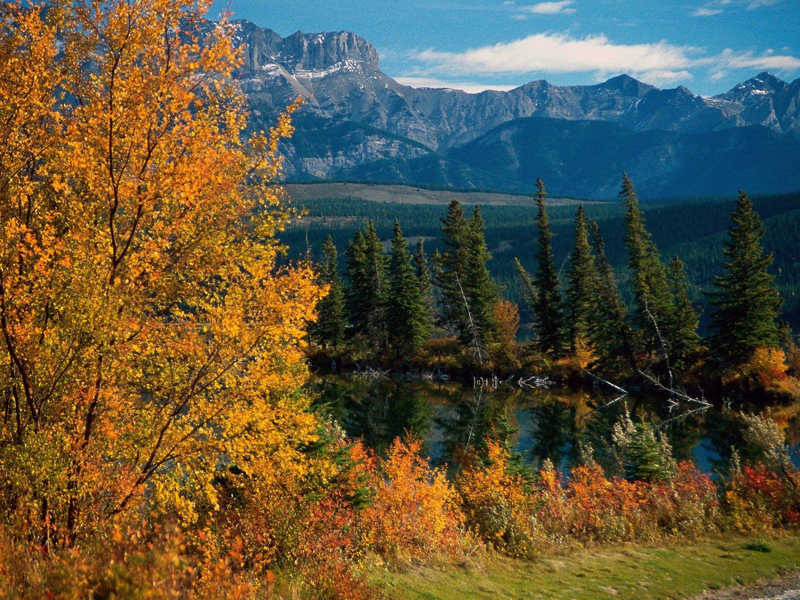 http://2.bp.blogspot.com/-y3iSZ9yT2Nk/TfrjtcOcLFI/AAAAAAAAFLE/cAyGS6ml_oU/s1600/Canada%2B%252828%2529.jpg