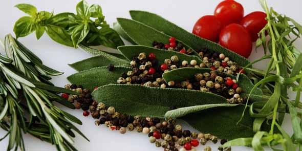 Obat Herbal Untuk Darah Tinggi