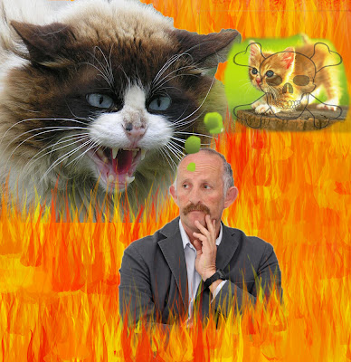 Gareth Morgan Cats