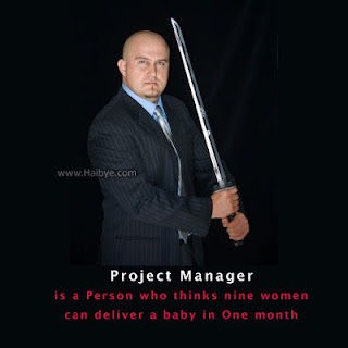 Definition of a Project Manager