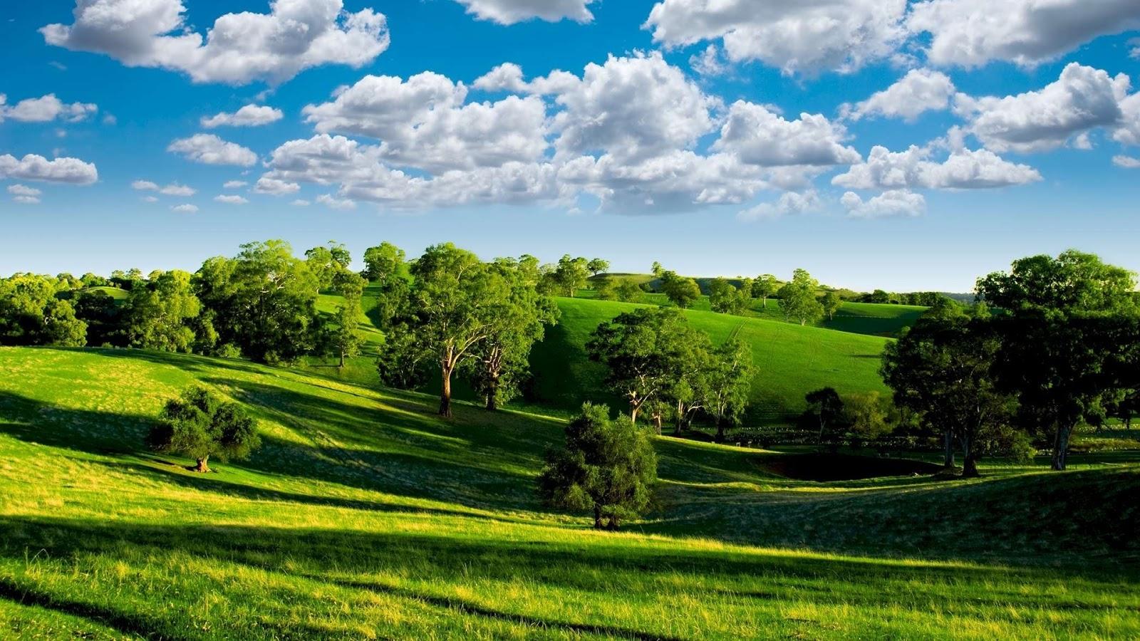 wallpapers scenery wallpaper landscape - photo #19