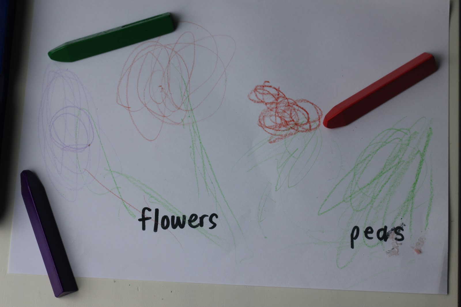 Vegetable garden kids drawing - Making An Organic Vegetable Garden With Children