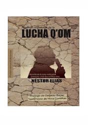 Algunos registros de la LUCHA Q'OM (ED. Proletrario 2013)