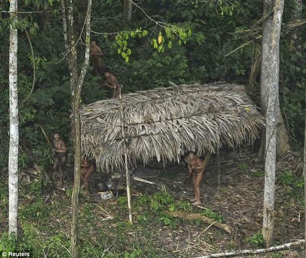 Pueblo indígena aislado