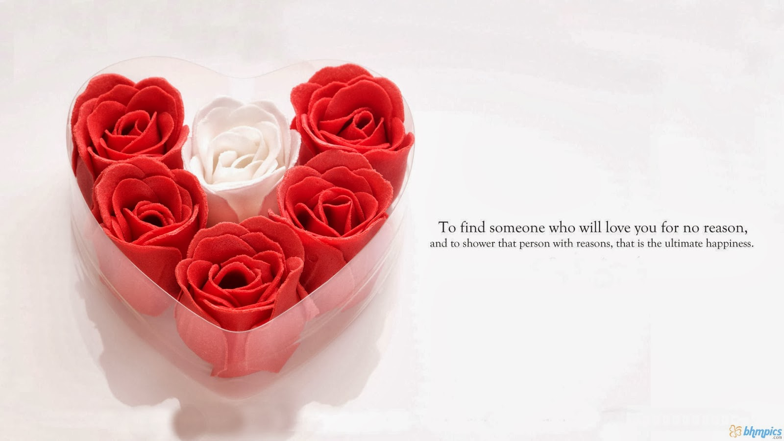 Flowers Quotes Wallpapers Beautiful Flowers Wallpapers