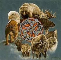 animais de poder