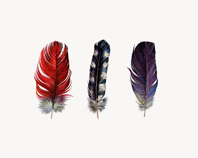 three feathers print by jodyvanb on etsy
