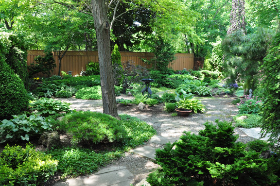 Three dogs in a garden creating a focal point part 2 for Garden design ideas ontario