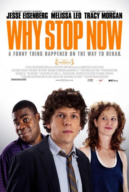 Why Stop Now [2012] [DvdRip] [Subtitulado]
