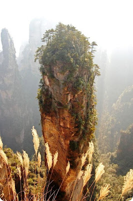 southern sky column mountains in the zhangjiajie national forest park china El Parque Forestal Nacional de Zhangjiajie, China bosque Pandora extraterrestre de Avatar.