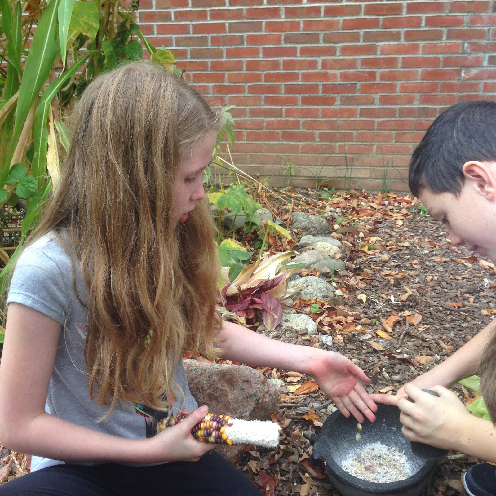 Hudson Valley Farm To School: Happy New Year from Haldane Farm to ...