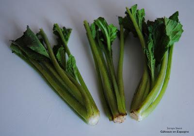 maigrir efficacement legume recette specialites espagnoles cuisine espagne bourrache