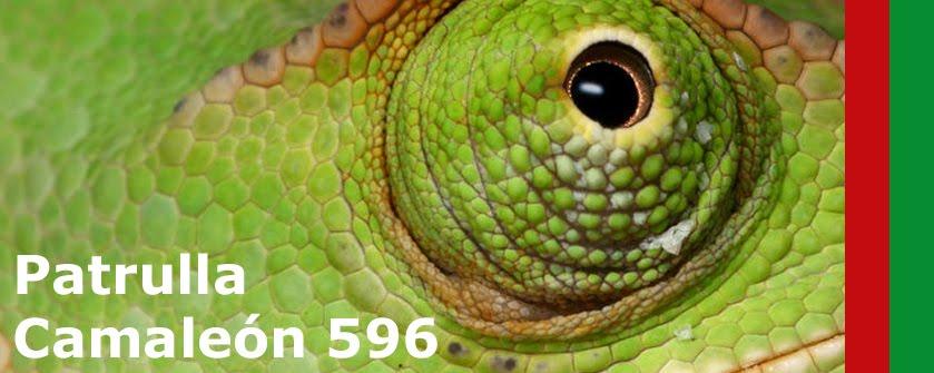 Patrulla Camaleón 596