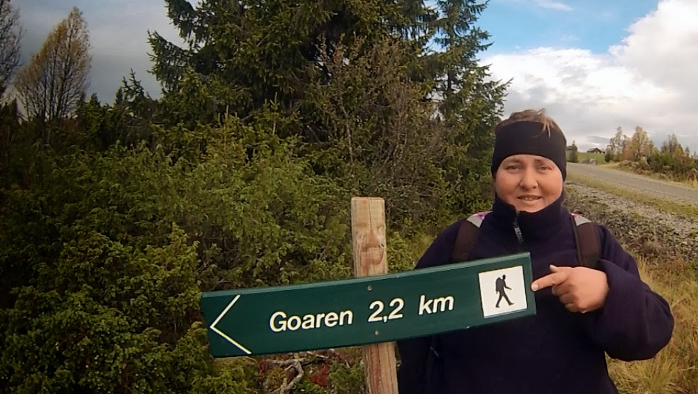 http://minituren.blogspot.no/2013/11/hst-tur-til-goaren-nord-i-etnedal-i.html