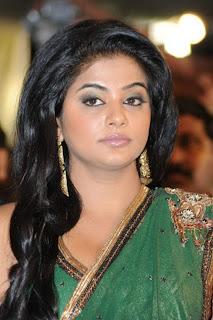 Priyamani Wearing a Green Saree Spicy Pics
