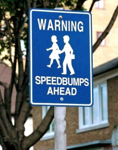 http://www.funnysigns.net/children-are-not-speedbumps/
