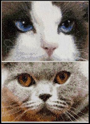 Thea Gouverneur, Smokey + Blu