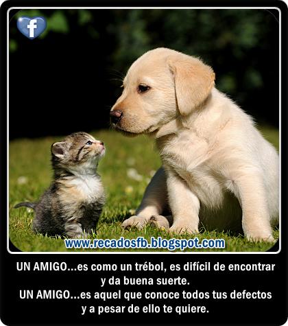 Imagenes De Facebook De Amistad - Imágenes de amistad para facebook Imágenes y fotos
