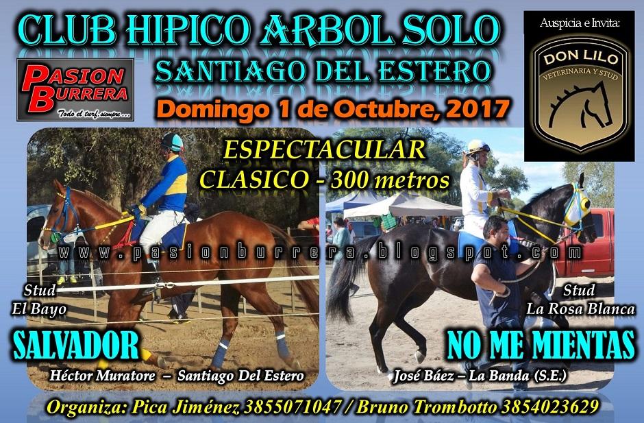 ARBOL SOLO - 1 DE OCTUBRE - 300
