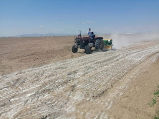 Tarımda 🌳🌳 Kalsiyum Sülfat kullanımı ve faydaları