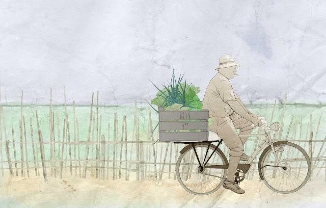 labarador, bicicleta