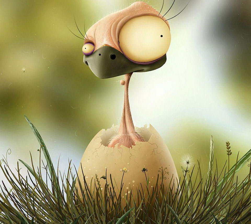 Funny picture clip angry birds everywhere funny pictures - Funny bird pics ...