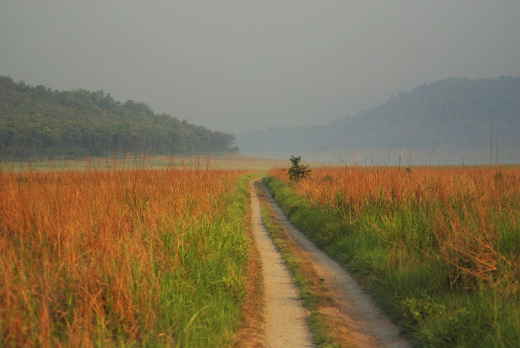 Gateway to Wilderness - Corbett National Park